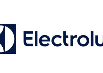 Electrolux_Tattoo_76x38mm